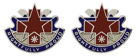 31st Combat Support Hospital Unit Crest